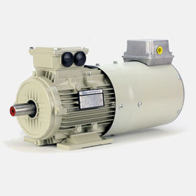 Inverter rated variable speed Vector AC Motor
